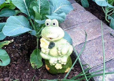 Garden Based Learning 1