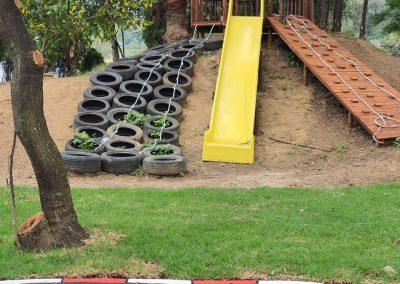 Baby Steps in Linbro Park 20