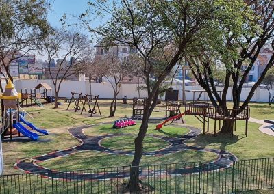 Baby Steps in Linbro Park 5